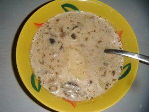Smetanová polévka z lesních hub